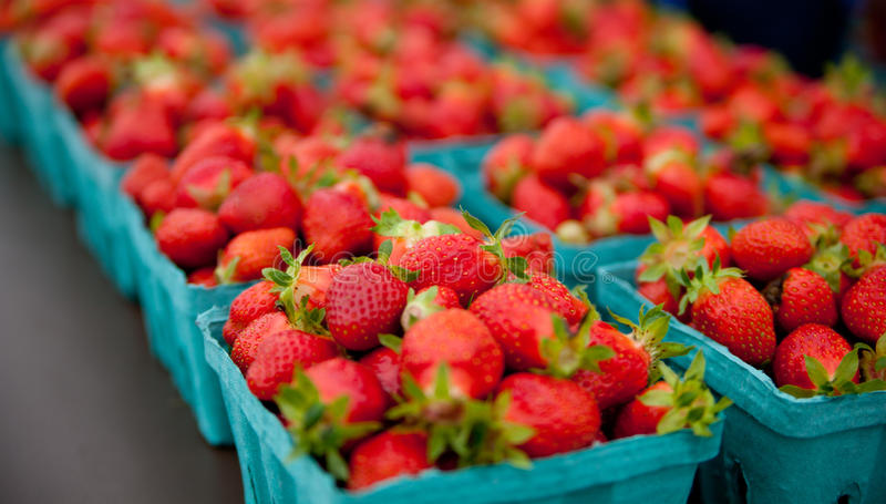 Behälter Erdbeeren an einem Landwirtmarkt lizenzfreies stockbild