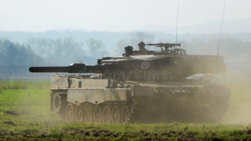 Behälter-Leopard stockbilder