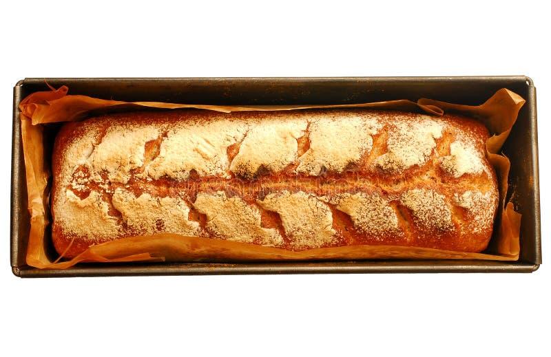 Behälter mit dem selbst gemachten Brot des frischen Sauerteigs lokalisiert auf weißem Hintergrund lizenzfreie stockbilder