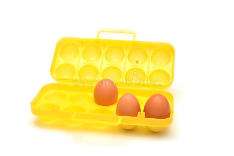 Behållare för ägg fotografering för bildbyråer