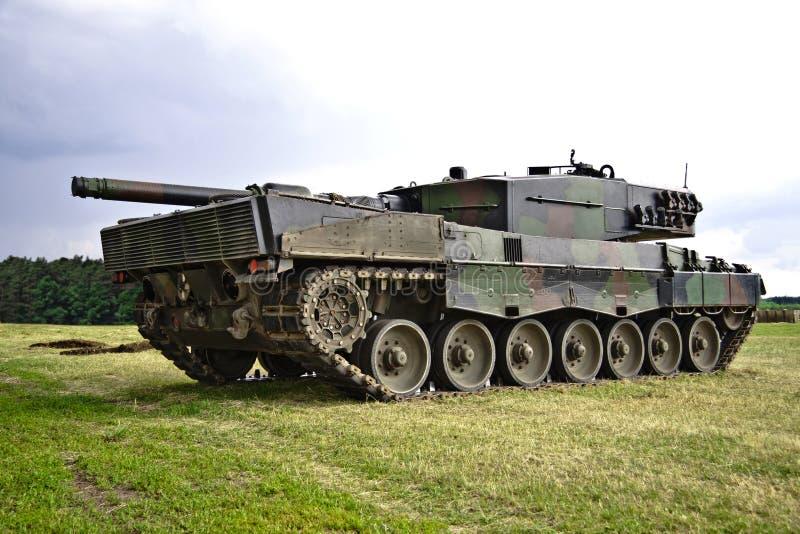 Behållare för huvudsaklig strid - leopard royaltyfri fotografi