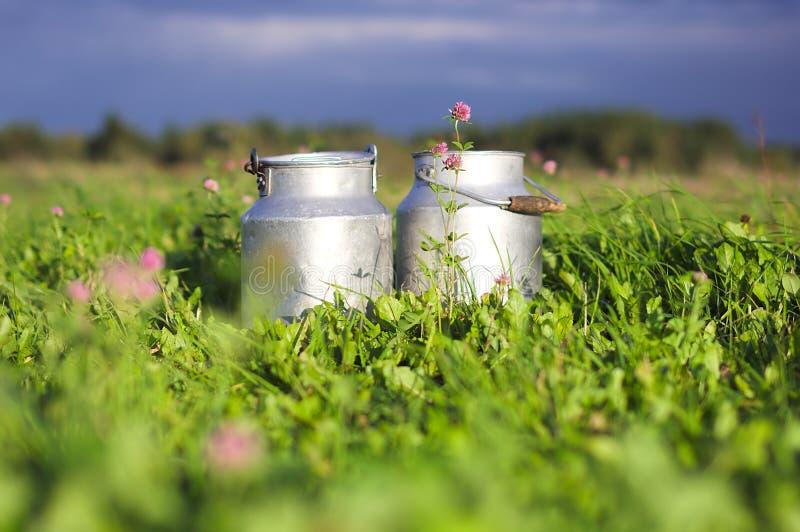 behållare mjölkar royaltyfri fotografi