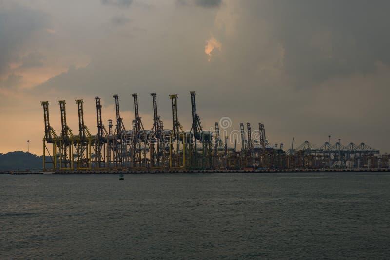 Behållarekran på den Tanjong Pagar päfyllningsskeppsdockan, Singapore royaltyfria foton