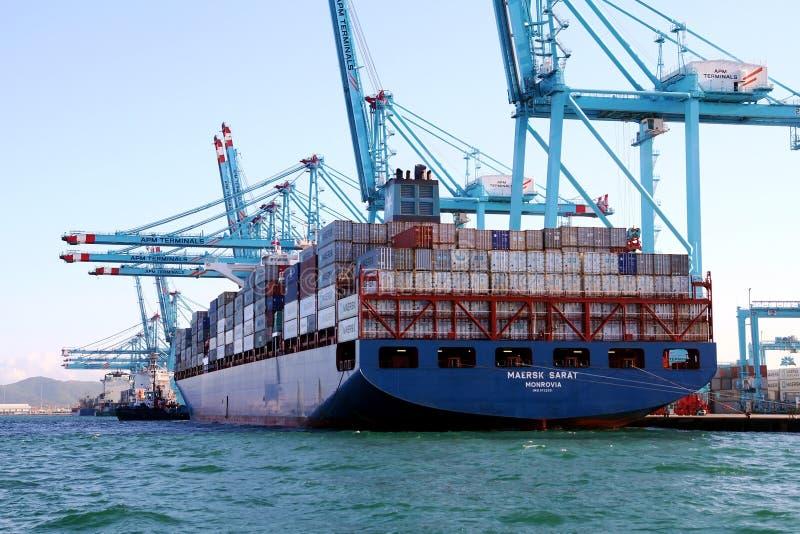 Behållareskeppet Maersk Sarat som arbetar med behållare, sträcker på halsen royaltyfri bild