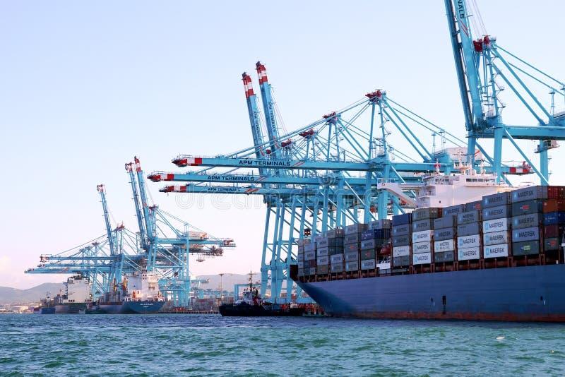 Behållareskeppet Maersk Sarat som arbetar med behållare, sträcker på halsen arkivfoto