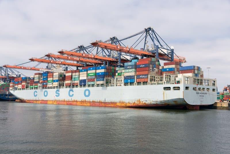 Behållareterminal i den holländska hamnen Rotterdam med förtöjde lastfartyg royaltyfria bilder