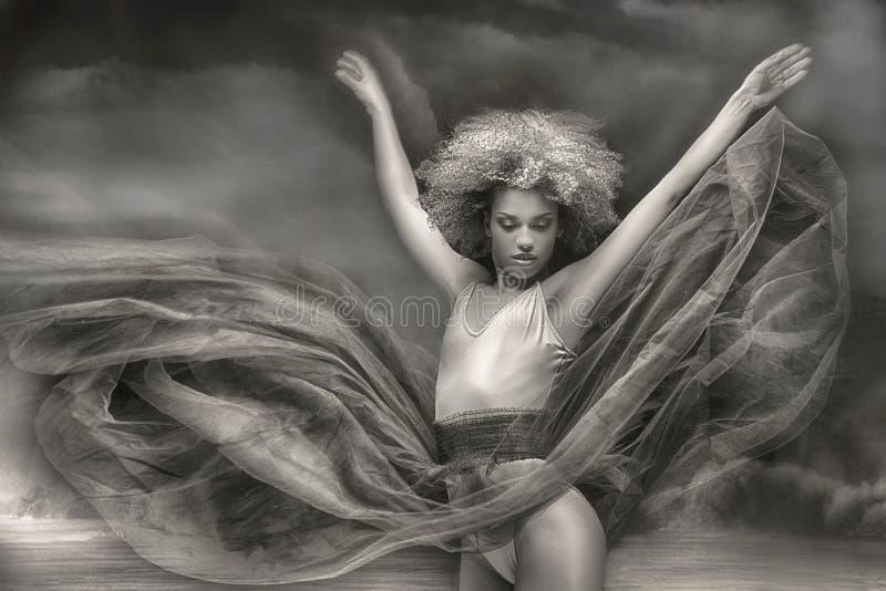 Behagfull afrikansk amerikanballerine arkivbild