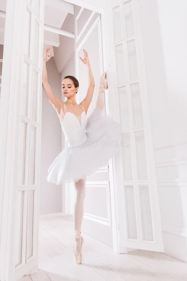 Behagfullt balettdansöranseende på ett ben royaltyfria foton