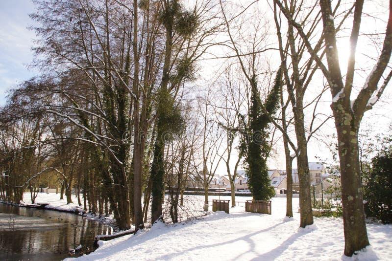 Behandeld met sneeuwbos, en een bevroren meer - Frankrijk stock afbeeldingen
