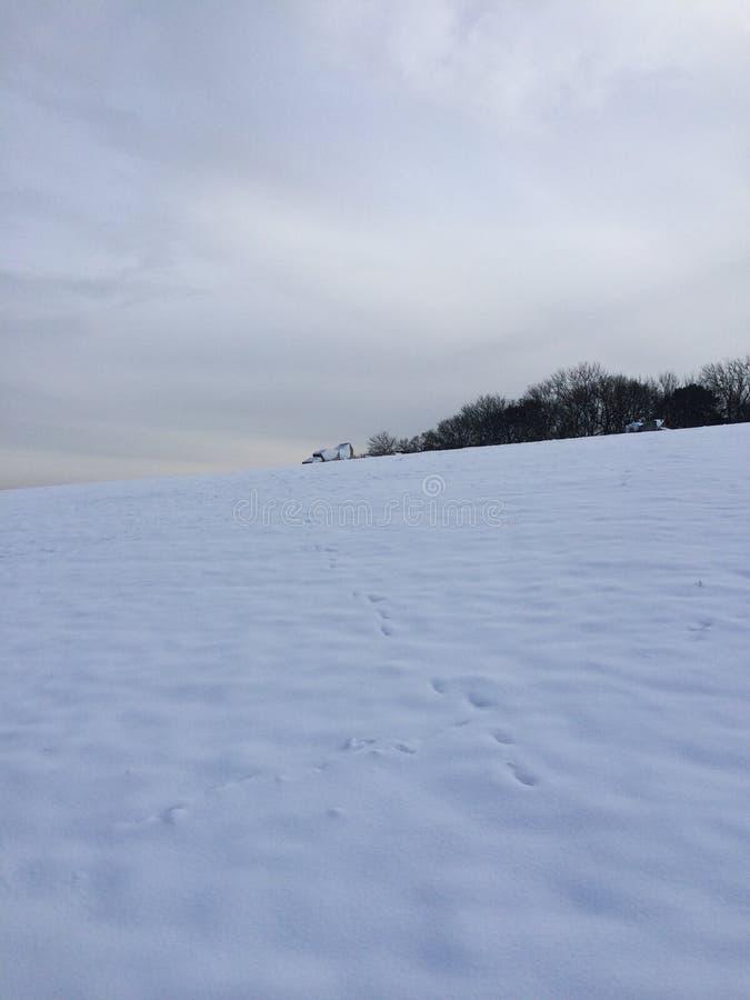 Behandelde de Sneeuw van de de winterheuvel stock foto's