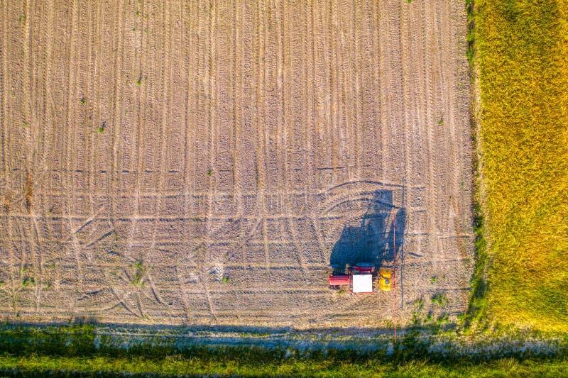 Behandelde het tractor bespuitende herbicide op jong graangebied, glyphosate onkruidcontrole, GMO zaden stock fotografie