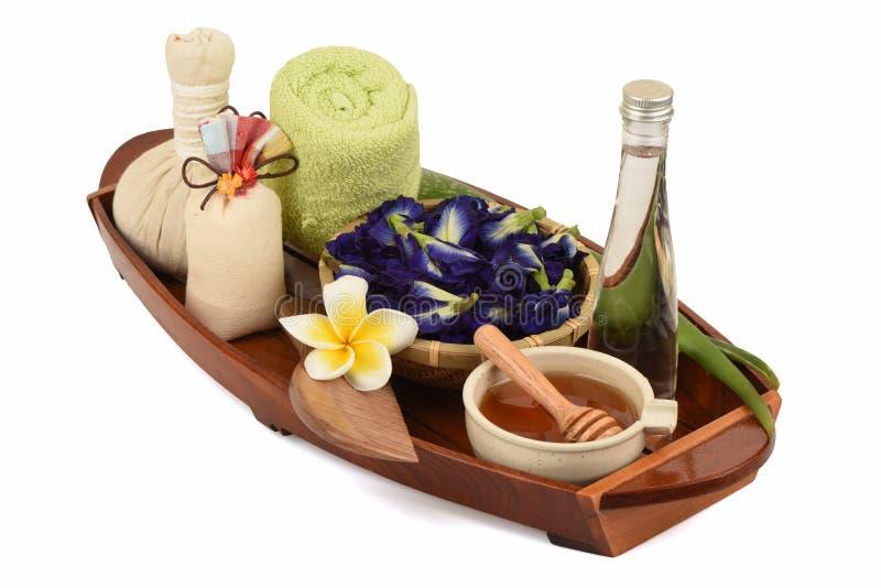 Behandelingen hair spa met aloë Vera, Vlindererwt, kokosnotenolie en honing stock afbeelding