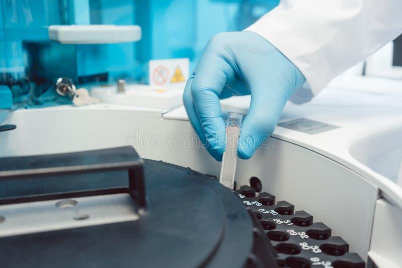 Behandeln Sie das Einsetzen von Rohren des Bluts in zentrifugale Maschine für die Prüfung stockfotografie