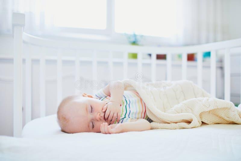 Behandla som ett barn att sova i Co-l?ngsg?ende st?dbj?lke lathunden som f?stas till f?r?ldrars s?ng arkivbild