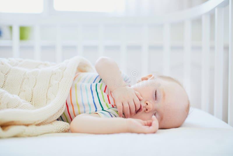 Behandla som ett barn att sova i Co-l?ngsg?ende st?dbj?lke lathunden som f?stas till f?r?ldrars s?ng royaltyfri foto