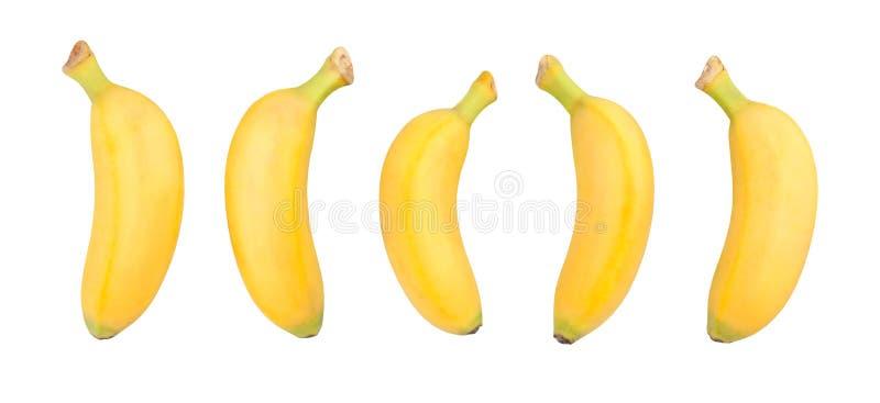Behandla som ett barn bananen royaltyfri bild