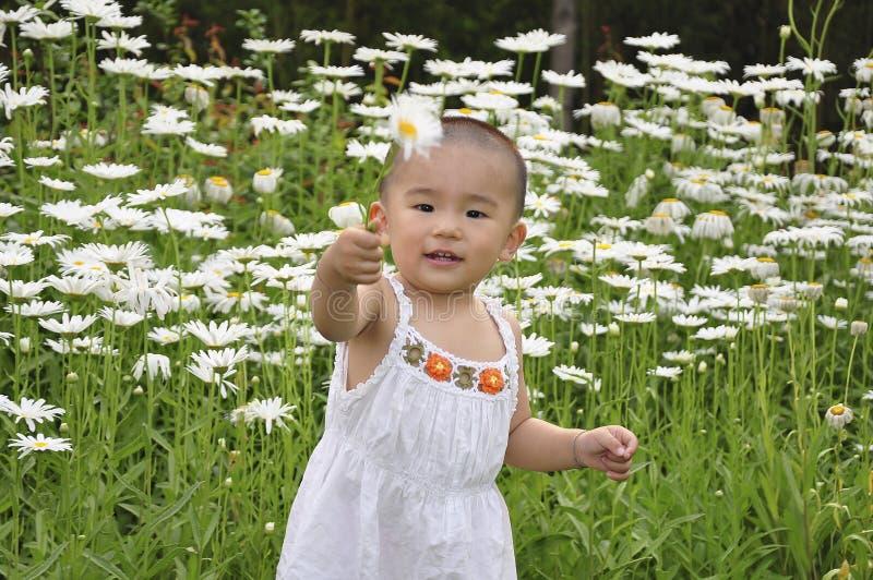 behandla som ett barn blommor royaltyfri fotografi