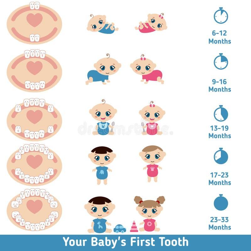 Behandla som ett barn få tänder diagrammet stock illustrationer