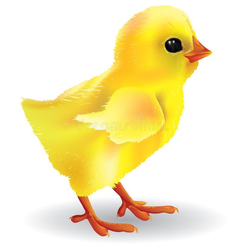 Behandla som ett barn fågelungen stock illustrationer
