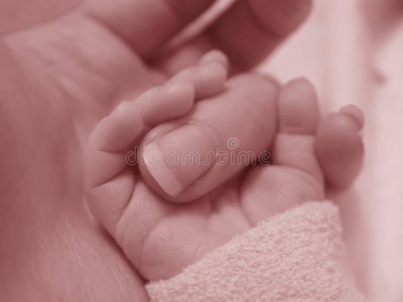 behandla som ett barn fingerholdingen royaltyfria foton