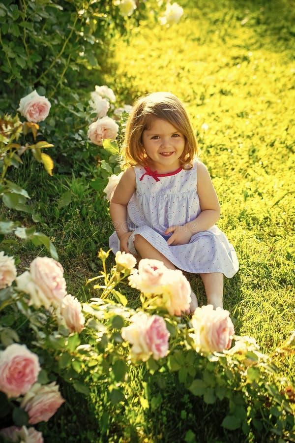 Behandla som ett barn flickan med gulligt leendesammanträde på grönt gräs royaltyfria bilder