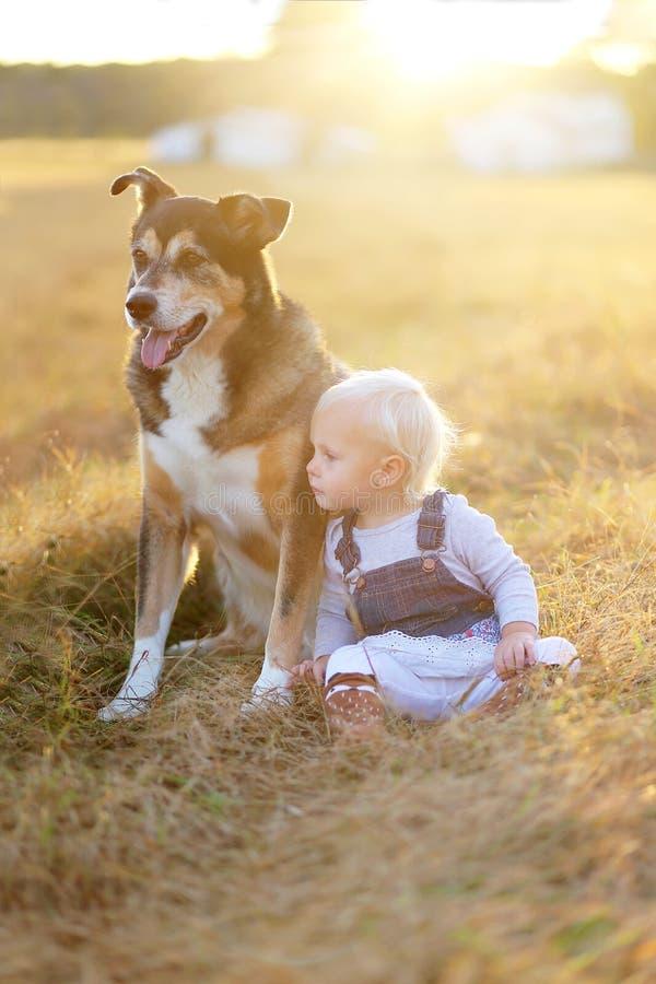 Behandla som ett barn flickan och dalta den tyska herden Dog Relaxing på lantgård på solnedgången arkivbilder