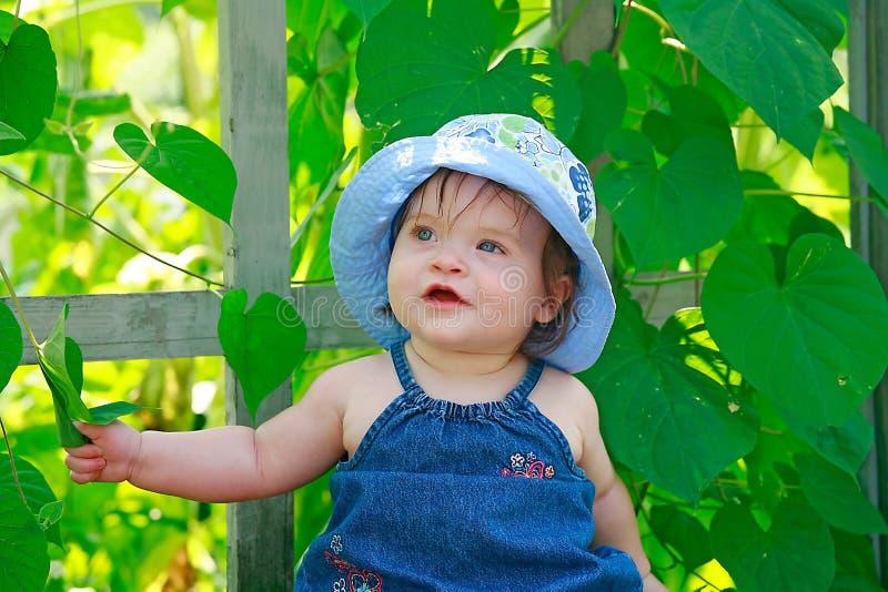 behandla som ett barn gulligt little royaltyfri fotografi