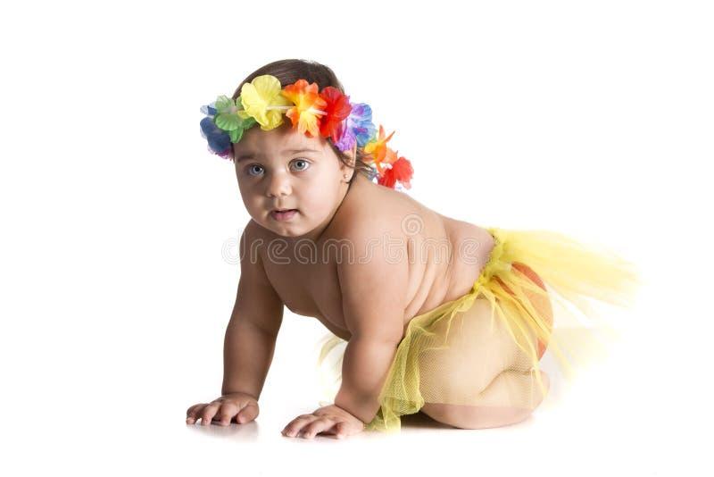 Behandla som ett barn hawaiibo royaltyfri fotografi