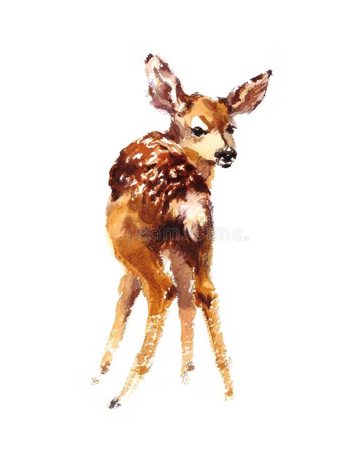 Behandla som ett barn hjortvattenfärgen Fawn Animal Illustration Hand Painted