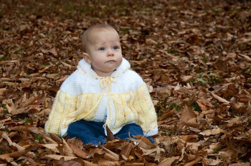 Download Behandla Som Ett Barn I Nedgång Lämnar Arkivfoto - Bild av utomhus, leaves: 27278488