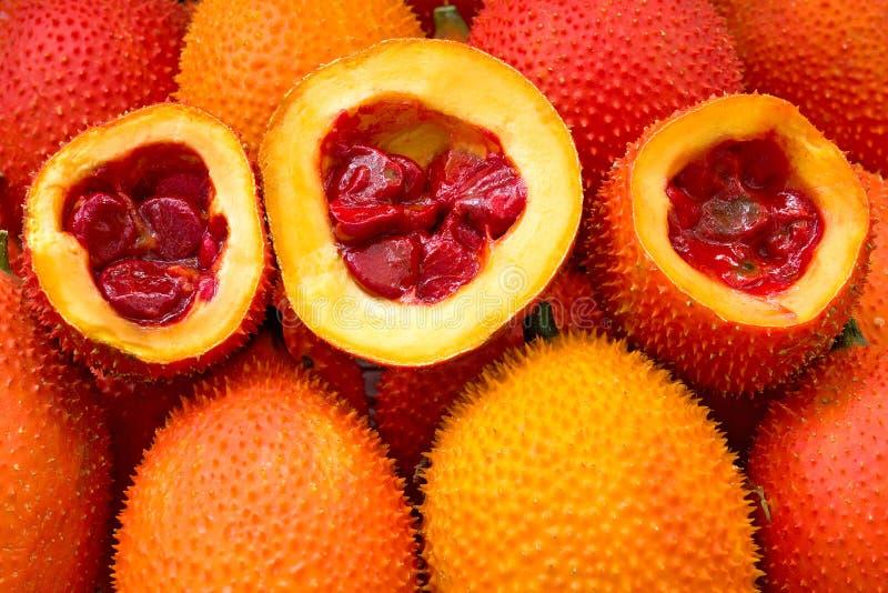 Behandla som ett barn Jackfruitgrönsakörter är bra för hälsa arkivbilder