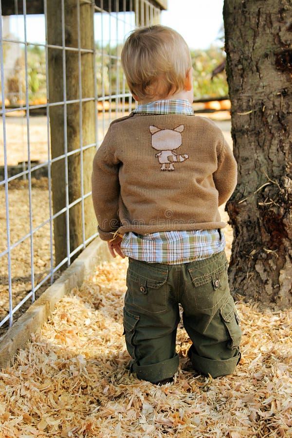 Download Behandla Som Ett Barn Landet Fotografering för Bildbyråer - Bild av unikt, utomhus: 983427