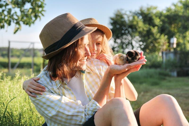 Behandla som ett barn lantlig stil för landet, den lyckliga mamman och dottern samman med nyfött hönor fotografering för bildbyråer