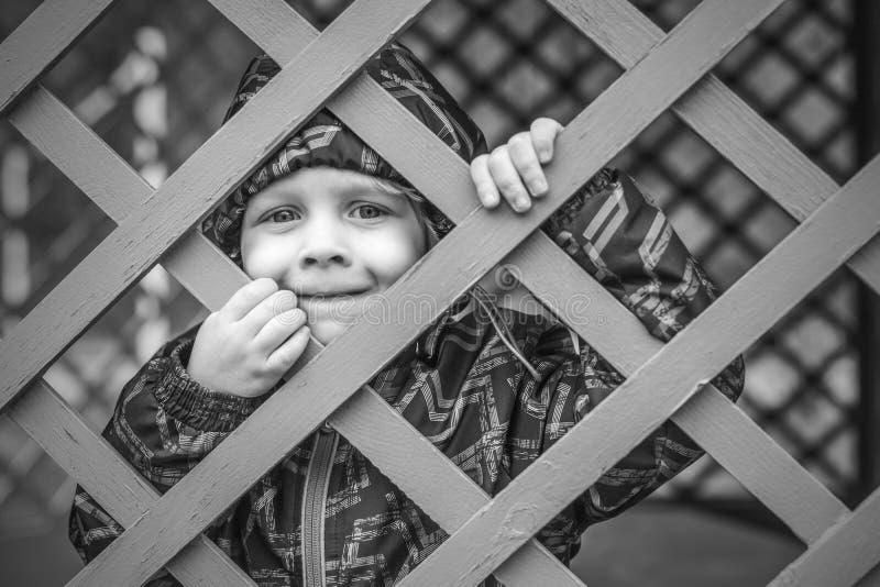 Behandla som ett barn lite pojken som ser till och med blåttstaketet royaltyfria foton