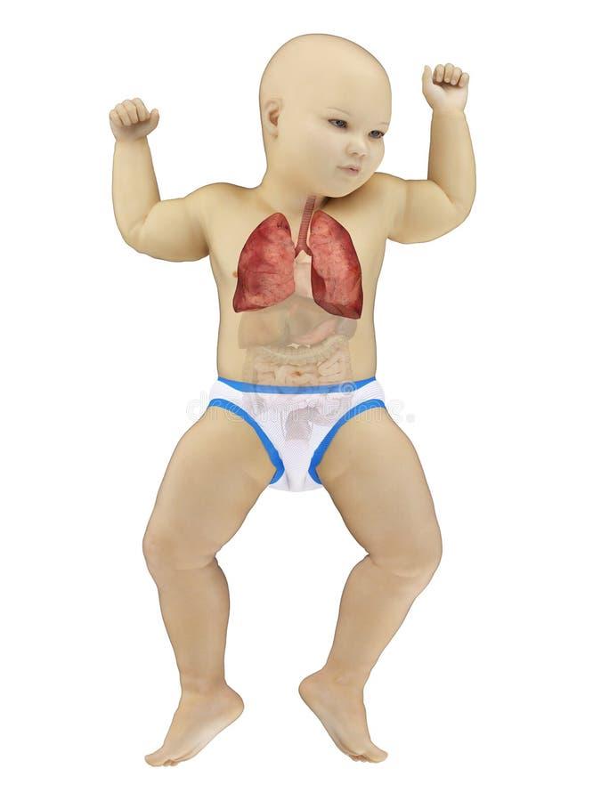 Behandla som ett barn lungan royaltyfri illustrationer