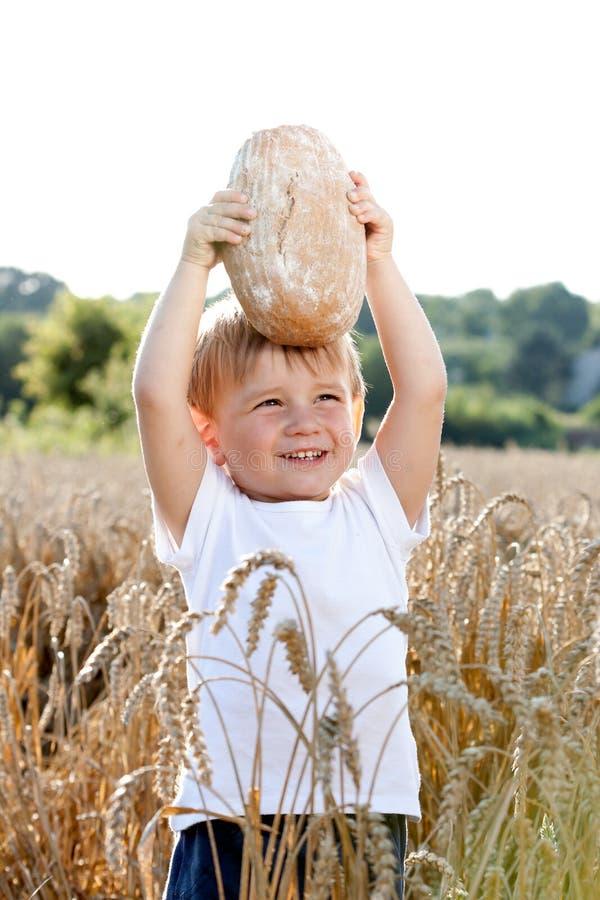 Behandla som ett barn med bröd på fält fotografering för bildbyråer