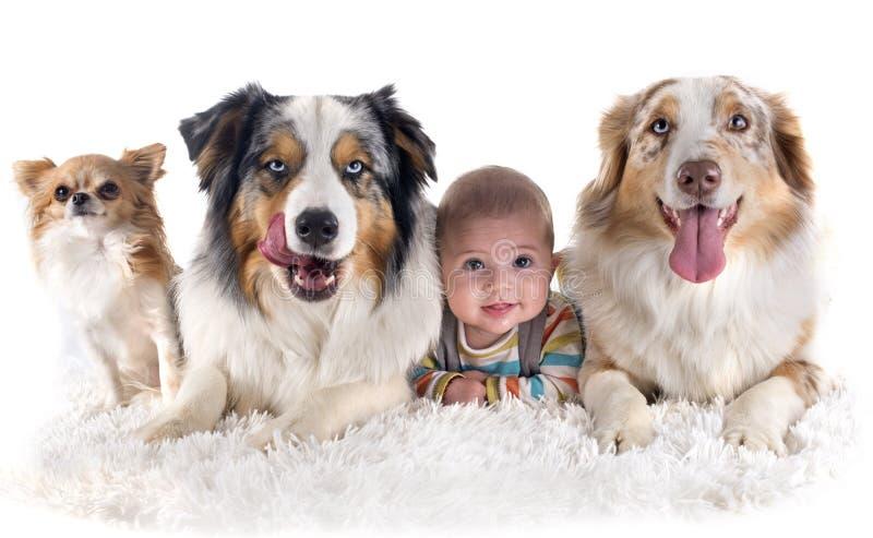 Behandla som ett barn och hundkapplöpning arkivbild