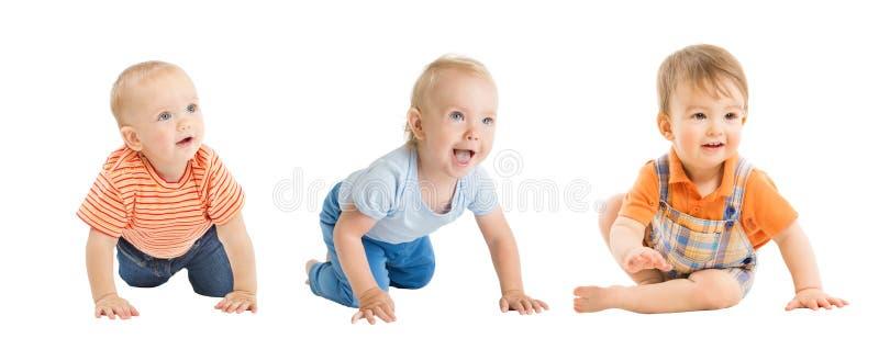 Behandla som ett barn pojkar, krypningen och sittande begynnande ungar gruppen, litet barnbarn på vit fotografering för bildbyråer