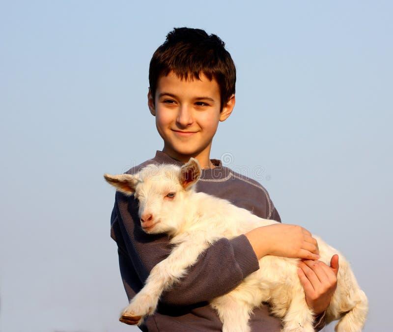 behandla som ett barn pojken bär geten royaltyfri bild
