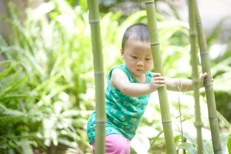 Behandla som ett barn pojken i sommar fotografering för bildbyråer