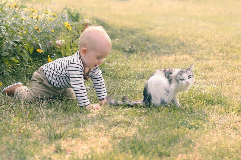 Behandla som ett barn pojken med en katt arkivfoto