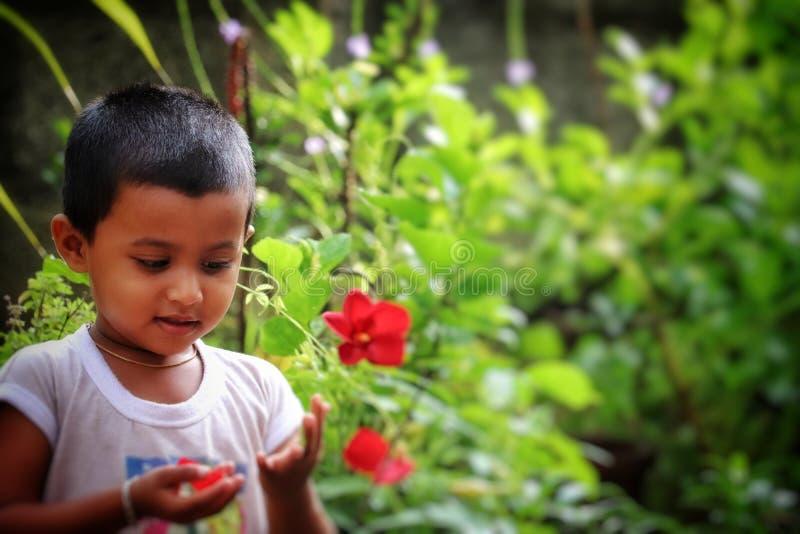 Behandla som ett barn pojken som spelar med blommor arkivbilder