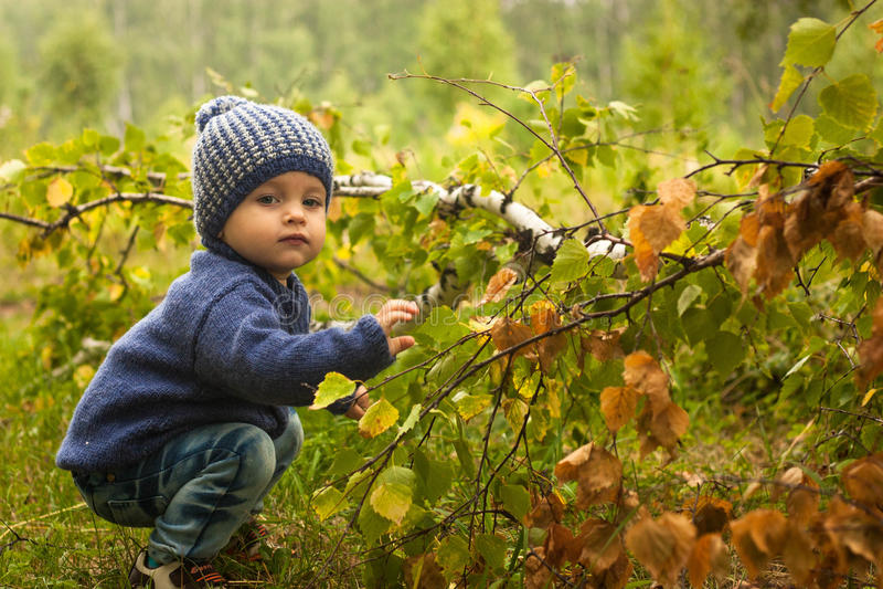 Behandla som ett barn rörande gröna trädsidor fotografering för bildbyråer