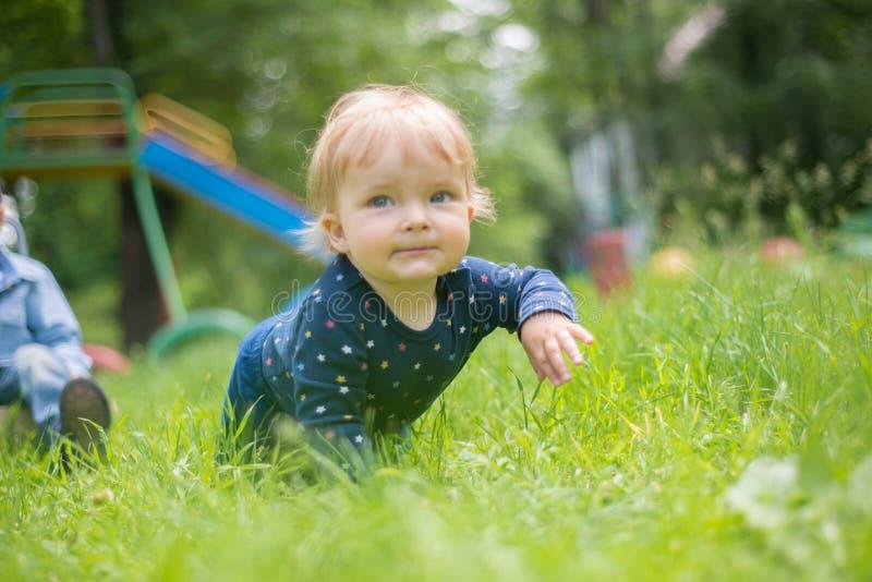 Behandla som ett barn sött lite krypanden på alla fours på gräset royaltyfria foton