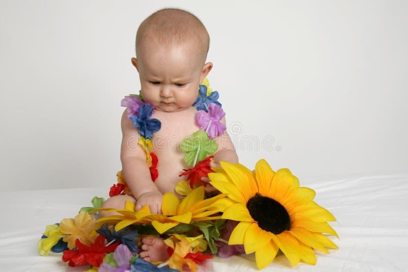 behandla som ett barn solrosen arkivfoto