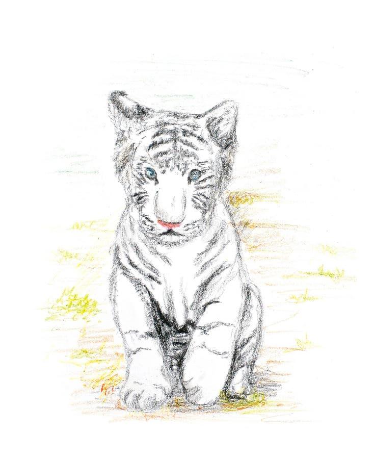 behandla som ett barn tigerwhite royaltyfri illustrationer