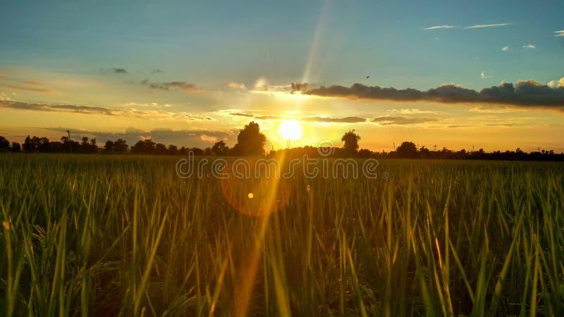 behandlad plats skjuten solnedgång för exponeringshdr long royaltyfri foto
