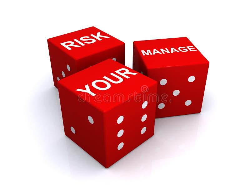Beheer uw risicoillustratie royalty-vrije illustratie