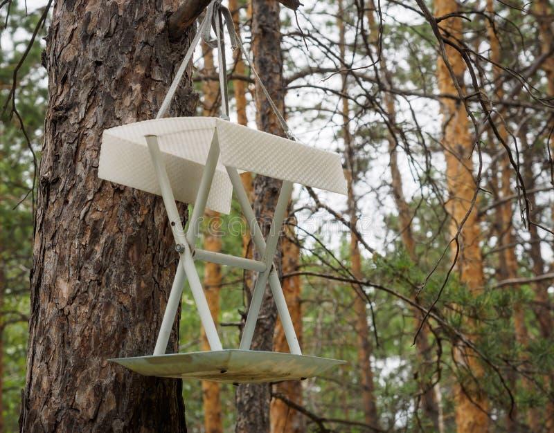 Behelfsmäßige Häuser für die Vögel im Park stockfotos