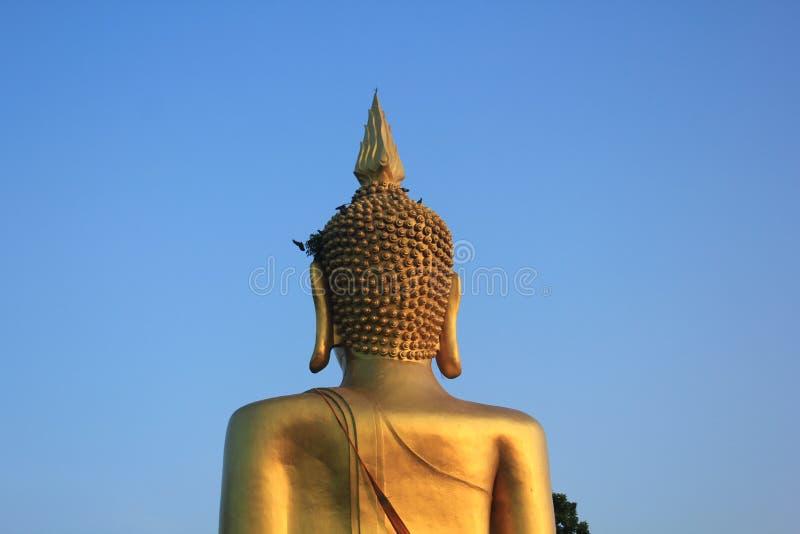 Behind Buddha. royalty free stock photos